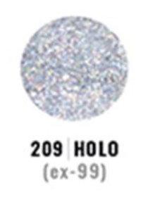 Holo 209
