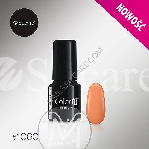 COLOR IT PREMIUM N°1060