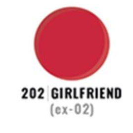 Girlfriend 202