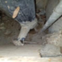 détection de fuite par luminat et torche UV la spécialités de detectplus.be