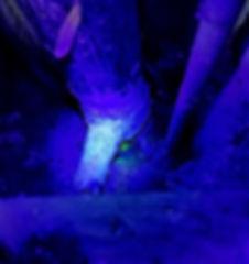 image UV de recherche de fuite