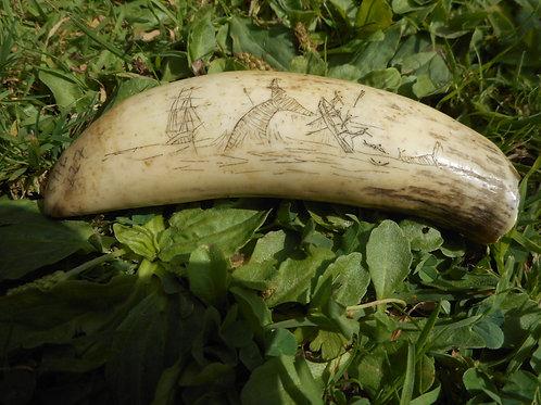 No.227 - Whaling scrimshaw