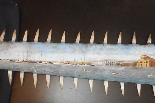 Sawfish Bill