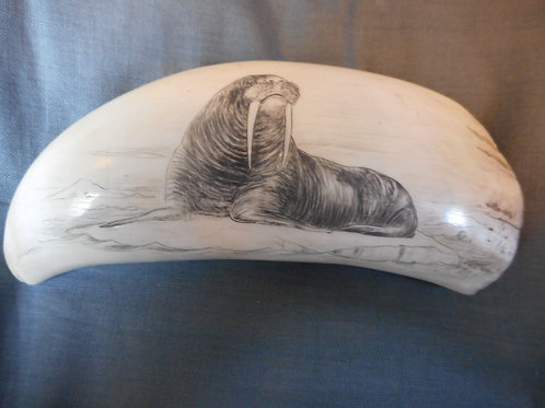 No.246 - Whaletooth depicting a Walrus