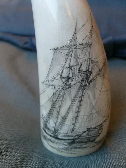 "No.86 Whaletooth french ""La Passagene"""