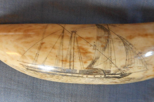 No.230 - Paddle steamer whale tooth
