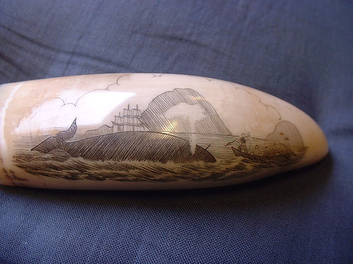 No.30 Whaling whale tooth
