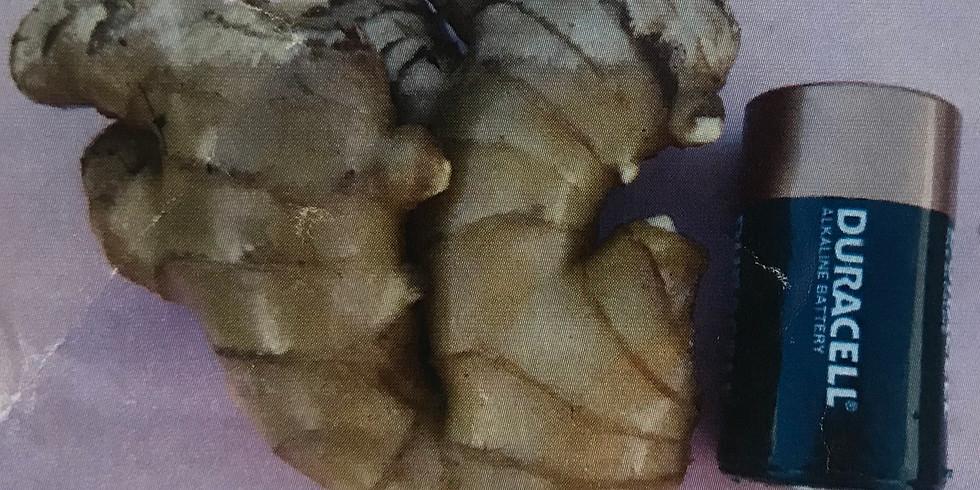 Planting Clean Ginger Workshop