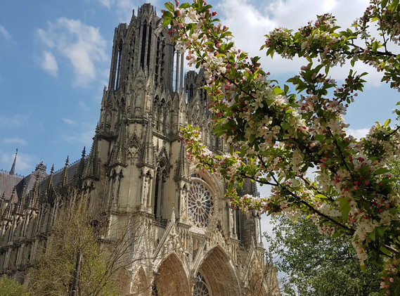 Cathedrale Notre Dame Reims