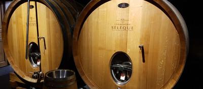 Champagne Jean-Marc Seleque cellar