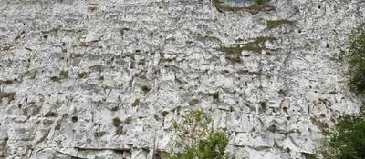 Chalk cliff Bisseuil