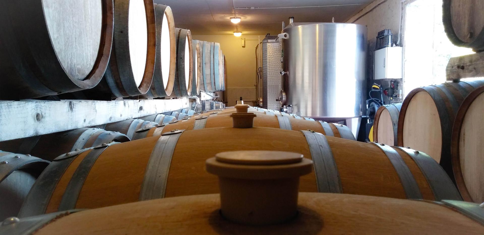 Futs in the cellar