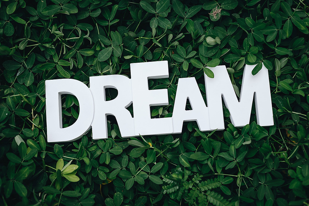 "The word ""dream"" in white capital letters laying on top of a green shrubbery background (Photo by Karyme França from Pexels)"