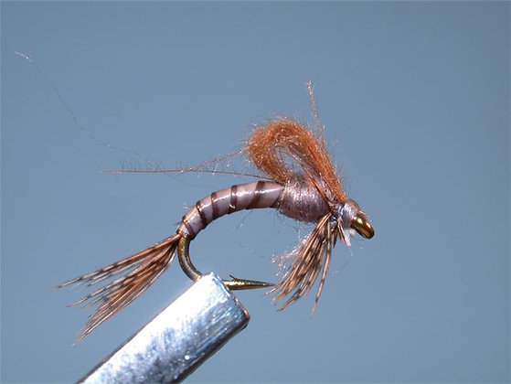 GREY LOOP EMERGER SIZE 18