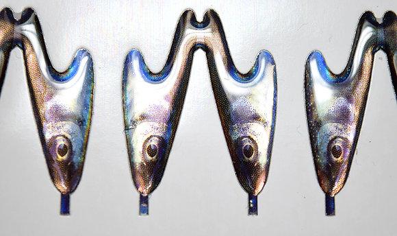 Phoxinus Phoxinus (Elritsa) Minnow Headz btm