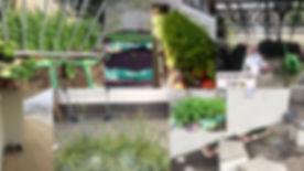 Buzzing Balconies_balcs.jpg