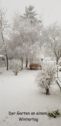 Winterfoto%202020_edited.jpg