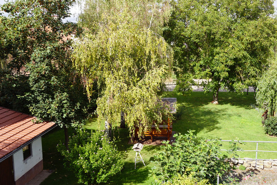 Blick aus dem Dachfenster.JPG