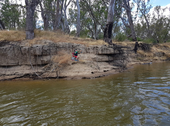 Edwards River - South of Deniliquin