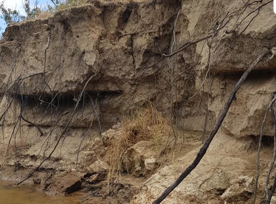 Downstream from Cobram