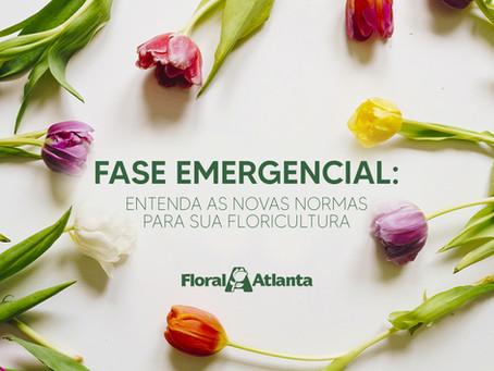 Fase Emergencial em São Paulo: Entenda como as novas normas afetam a sua floricultura