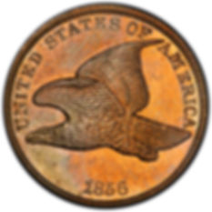 Flying Eagle Penny | S&S Coins and Supplies