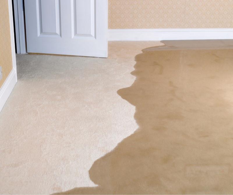 Basement water damage, carpet