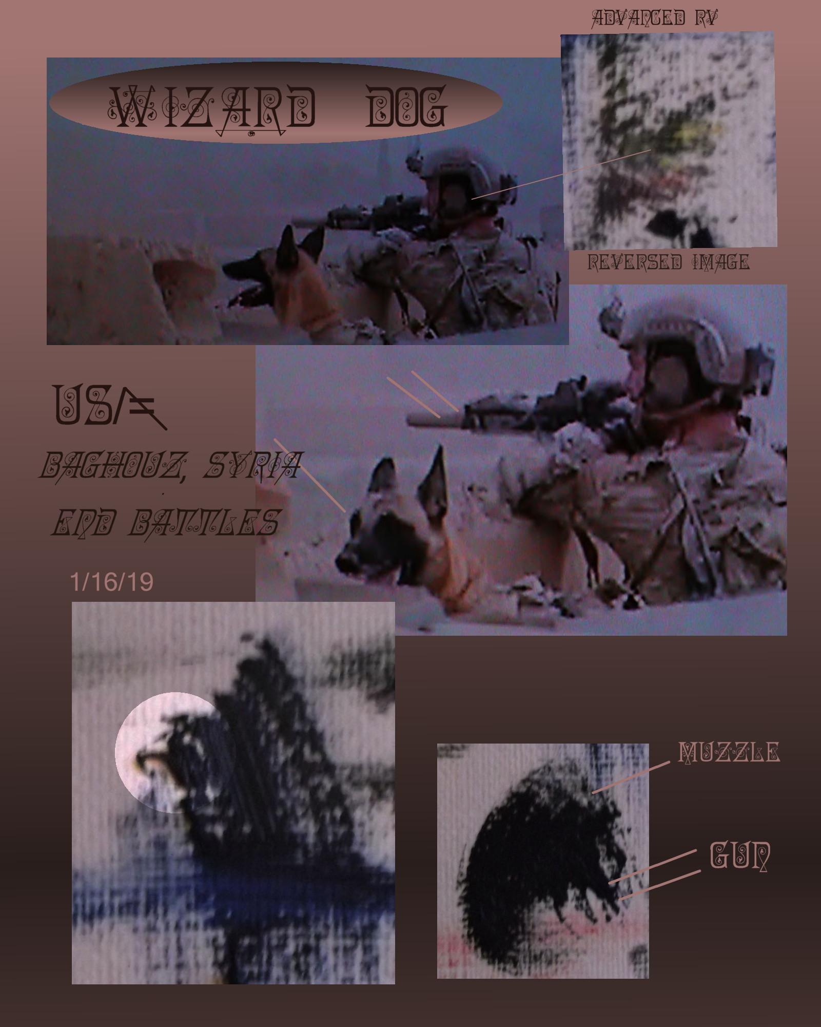 dog black face afghan or syria usa troop