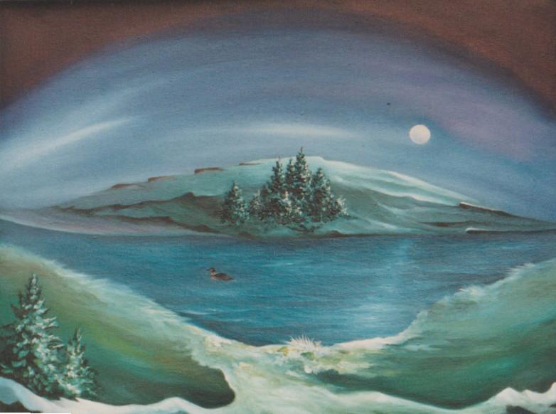 lost loon lagoon ns 17