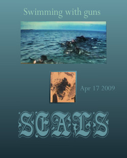 SEALs swimming with guns page