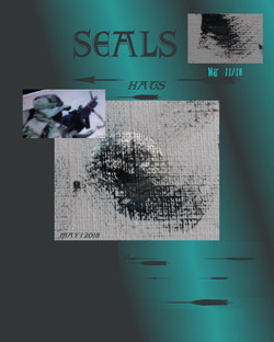 SEAL hats page may 1 18 xxx