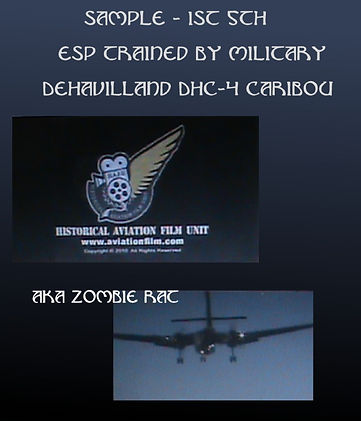 dehavilland historical zombie rat page.j