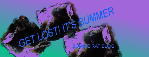 GET LOST summer blog - Copy.jpg