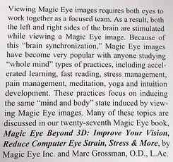 MAGIC EYE whole brain.jpg