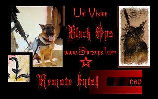 DOG esp card - Copy.jpg