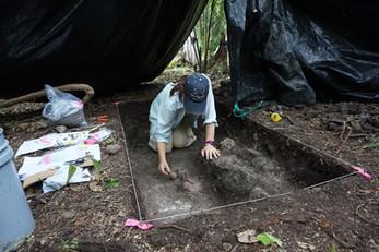 Excavaciones dentro de la Estructura 133-4, UCA08A-3-3-360
