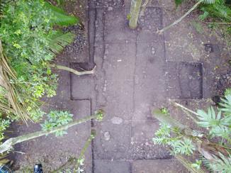 Fotografía de las excavaciones de la Estructura 151-1, parte inferior del Nivel 2