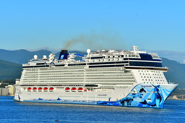 cruise ship (1).jpg