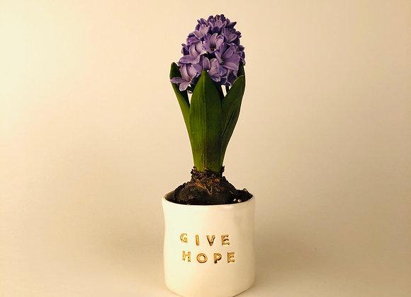 Pot à bulbe *Give Hope*