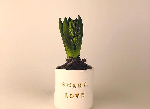 Pot à bulbe *Share Love*