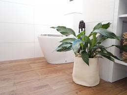 Zelené zátiší na toaletě