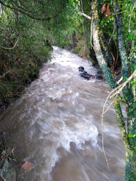 Our full, fast, river in wales