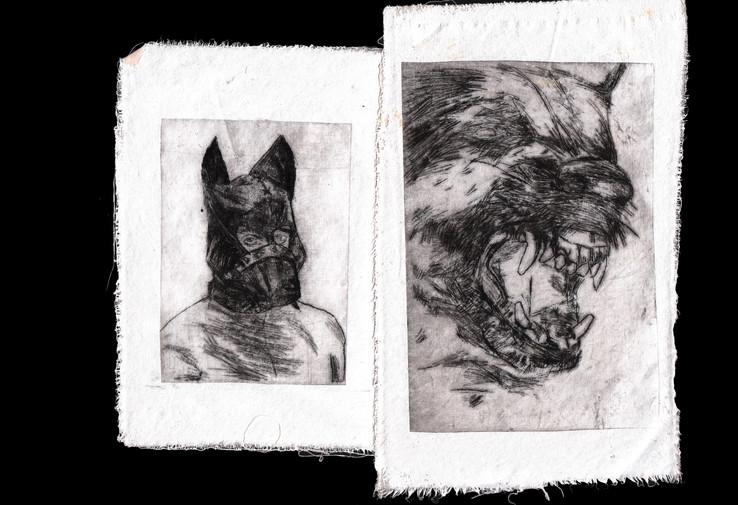 собака2 копия.jpg