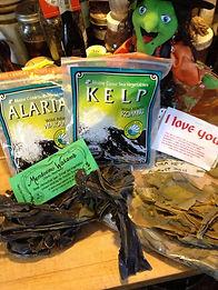 Cheesy Seaweed Quiche