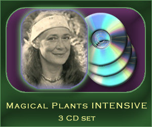 Magical Plants intensive - 3 CD set
