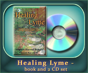 Healing Lyme - book and 2 CD set