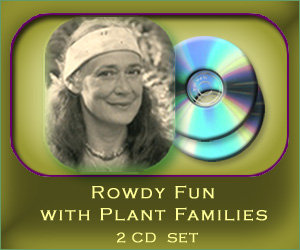 Rowdy Fun with Plant Families - 2 CD set