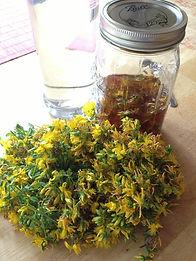Make A Tincture - Fresh Herb