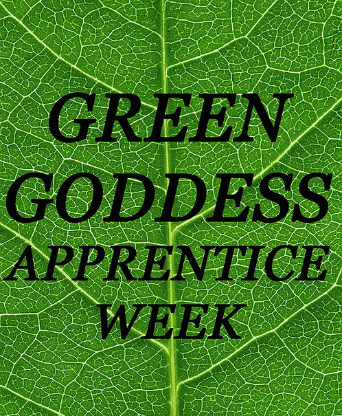 Green Goddess Apprentice Week