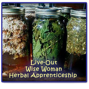 Live-Out Wise Woman Herbal Apprenticeship